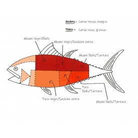 Qual è il miglior tonno per sushi?